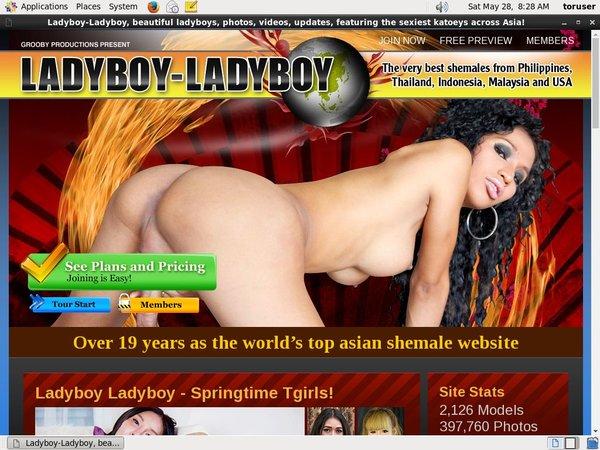 Free Ladyboy Ladyboy Accounts And Passwords
