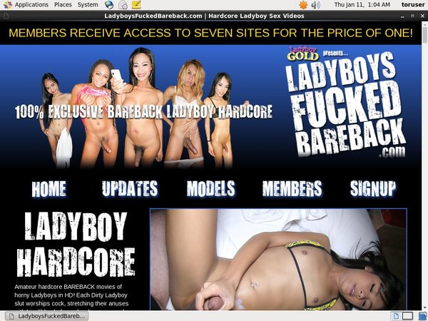 Ladyboys Fucked Bareback Discount Price