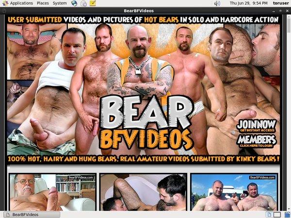 Bear BF Videos 注册帐号