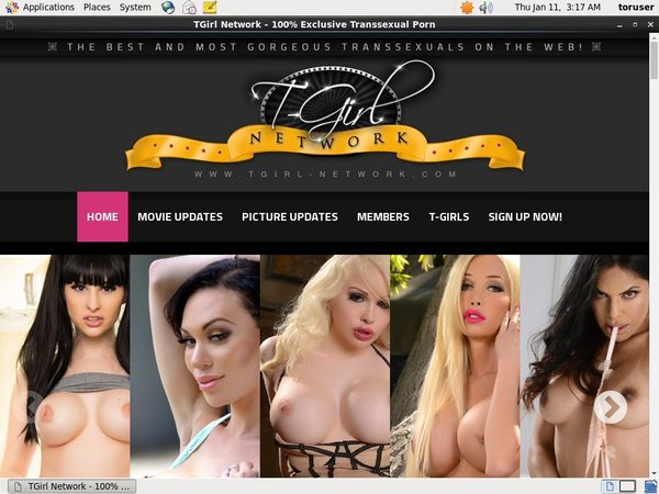 T Girl Network All Videos